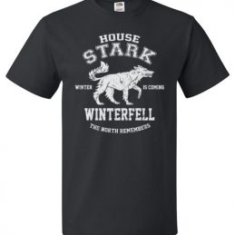 $18.95 - Game of Thrones House Stark Winter is coming Winterfell The North Remember T-Shirt